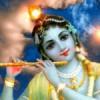 G8, Klima & Krishna