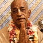 Nur mit Hilfe eines echten Gurus kann man Krishna verstehen