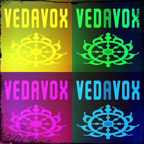 Vedavox-Warhol